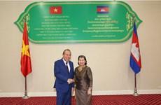 越南政府常务副总理张和平对柬埔寨进行访问