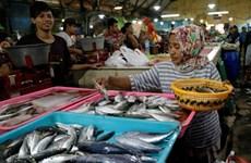 印度尼西亚计划建设国际海产品市场