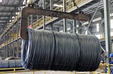 越南钢铁产品向巴西出口数量和金额双双大幅增长