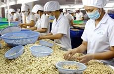 腰果仁对中国出口增长58%以上