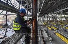 德国集中引进更多越南劳工