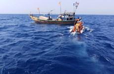 越南驻中国外交机构加强领事保护工作