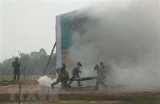 越柬两国国防部联合开展陆地边界地区搜救演习