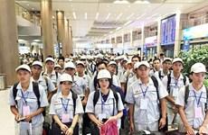 2019年前11月越南劳务输出超额完成既定计划