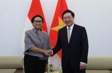越南政府副总理兼外长范平明同印尼外长举行会谈