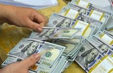 越盾对美元汇率中间价24日上涨5越盾
