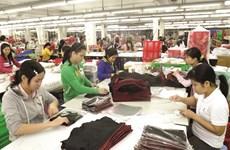 努力推动劳动力市场发展 充分发挥EVFTA协定带来的好处