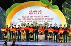 河江省橙子和典型农产品周:推动农产品稳定营销的良好机会