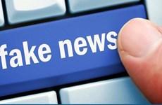 寻找措施打击假新闻、歪曲事实的信息