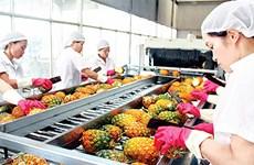 蔬果出口:要在新市场肯定其价值
