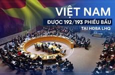 2019年对外工作体现了越南的政治本领和地位