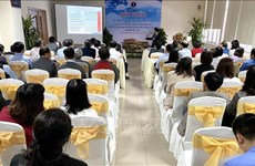 越南吸引外国人赴越体验优质医疗保健服务