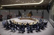 越南与联合国