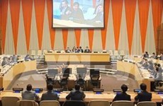 越南正式担任本月联合国安理会轮值主席国