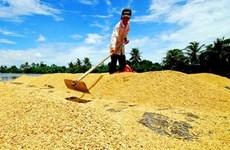 2019年柬埔寨的农产品出口量达约700万吨