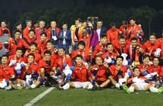 2019年越南八大体育新闻