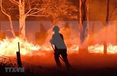 阮春福就澳大利亚严重森林火灾向澳总理致慰问电