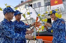 """越南海警第一区司令部举行""""海岛春节""""活动"""
