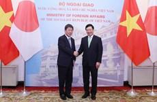 政府副总理兼外长范平明与日本外务省大臣举行会谈