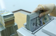 1月8日越盾对美元汇率中间价下调9越盾
