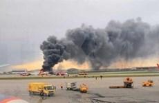 俄罗斯一大棚种植区起火事故:确认一名越南女公民烧伤严重