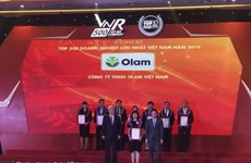 2019年越南企业500强榜单正式公布