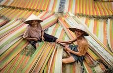 同塔省上百年历史的手工织席村