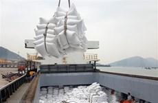越南同塔省多措并举提升水稻产值