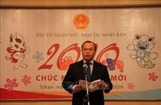 旅外越南人纷纷举行活动  喜迎2020庚子鼠年新春