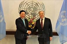越南与联合国安理会:联合国秘书长与各国官员高度评价越南的国际地位
