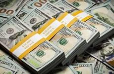 1月13日越盾对美元汇率中间价下调4越盾
