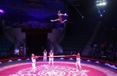 2020年国际杂技节在胡志明市举行