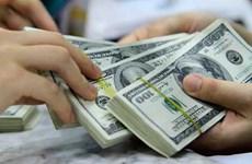 1月16日越盾对美元汇率中间价下调2越盾