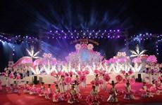 谅山省2020庚子年桃花节:精华荟萃 春色芬芳