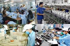 建党90周年:私人经济是越南经济的重要动力——为私人经济发展铺平道路(第二期)