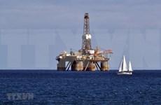 印尼12项新天然气项目将在2020年内投运