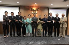 2020东盟轮值主席年:越南主持东盟和平与和解研究院执委会会议