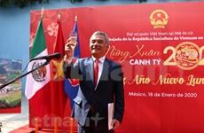 越南驻外使馆举行新春招待会喜迎新春