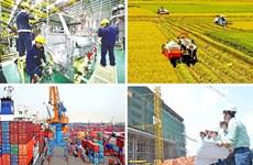 建党90周年:私人经济是越南经济的重要动力——充分挖掘私人经济的潜力(第三期)