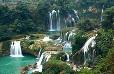 Dambri瀑布——西原地区丛林中的宏伟与壮观