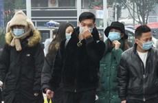 越南驻中国大使馆尚未收到越南留学生感染新型冠状病毒的报告