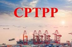 CPTPP生效一年后带来切实利益