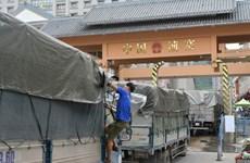 越南密切关注新型冠状病毒感染的肺炎疫情  准确评估其对进出口活动产生的影响