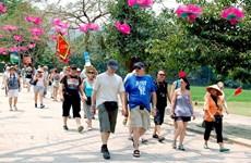 2020庚子年春节假期河内旅游接待人数出现较大的波动