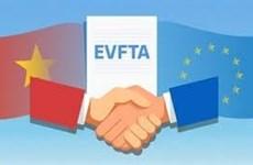 各项自贸协定给越南出口活动开辟了新发展空间