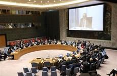 越南与联合国安理会:越南主持召开联合国安理会有关塞浦路斯和利比亚问题 的会议