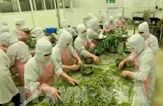 安江省力争至2025年出口总额达到12亿美元的目标