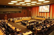 越南与联合国:越南成功担任2020年1月联合国安理会主席