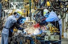 越南共产党建党90周年:越南经济30年持续增长令全球印象深刻
