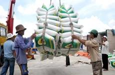 越南大米对菲律宾出口猛增